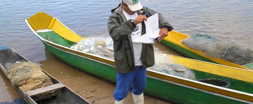 Monitoramento realizado pelo Instituto de Pesca fornece subsídios para mudanças na legislação pesqueira em SP